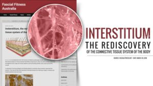 organ tubuh baru manusia, interstitium