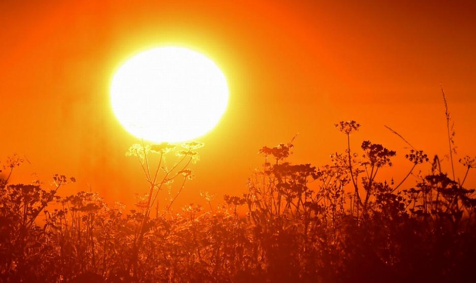 4 Fakta Heat Wave Menurut Penjelasan Ilmiah